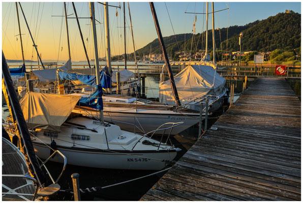 Steg mit Booten im Jachthafen Bodman 0161