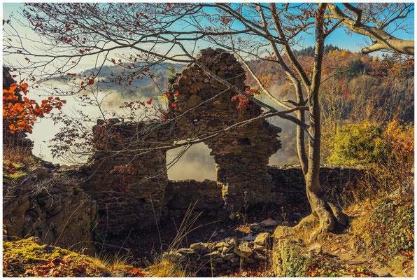 Burgruine Hohenkrähen 4839
