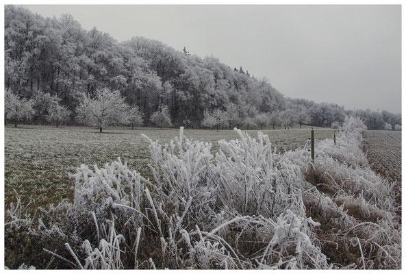 2183 Winterlandschaft
