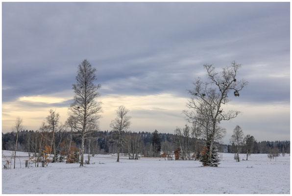 Landschaft im Irndorfer Hardt 5400