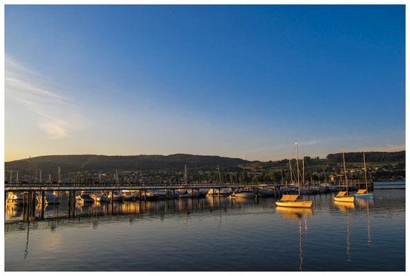 Steg Schiffsanleger Hemmenhofen mit Yachthafen bei Morgenlicht 9819