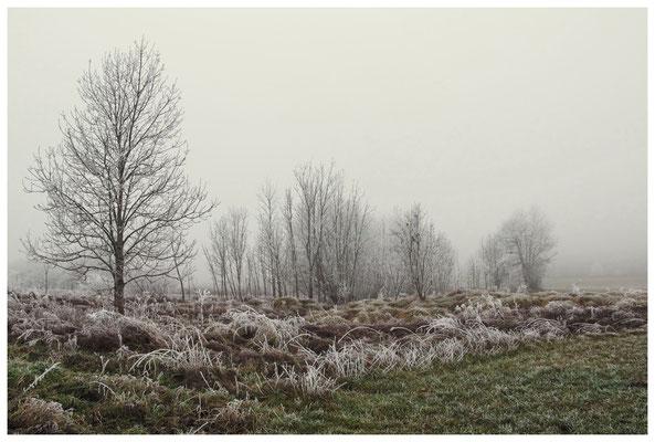 2087 Winterstimmung bei Münchhöf - Eigeltingen