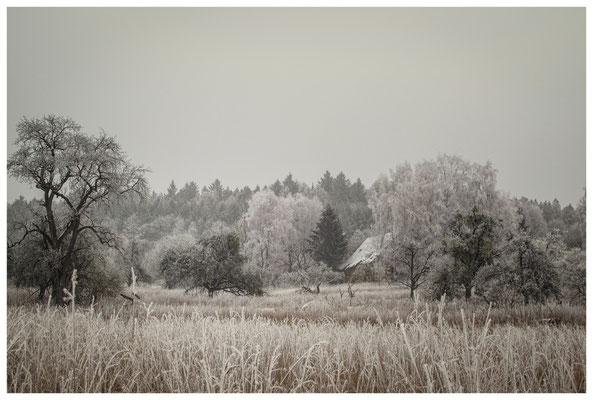 Winterlandschaft mit altem Bauernhaus bei Stockach 2518