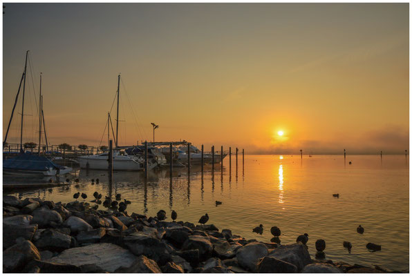 Nach Sonnenaufgang am Zeller See in Moos 3524