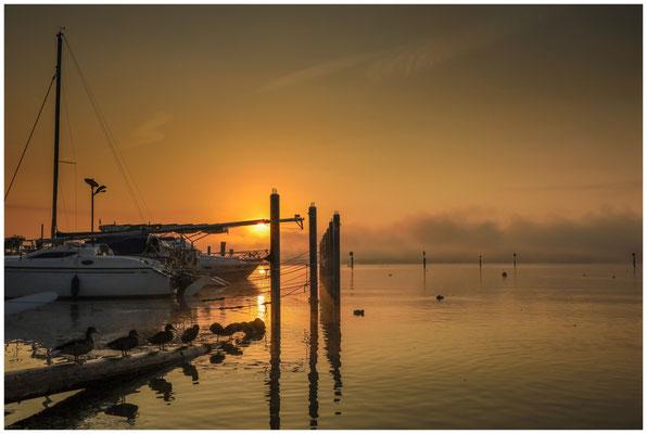 Nach Sonnenaufgang am Zeller See in Moos 3522