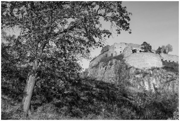 Festungsruine Hohentwiel 4972