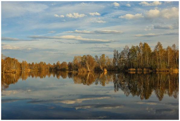 Uferlandschaft Nillsee 2232