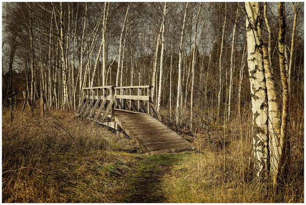 Holzbrücke im  Pfrunger-Burgweiler Ried 1826