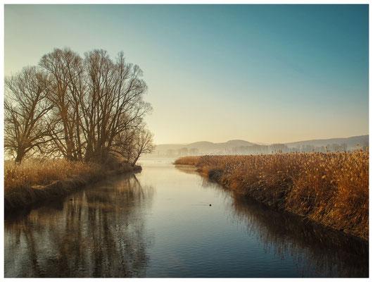 8531 Naturschutzgebiet Radolfzeller Aach - Bodenseemündung