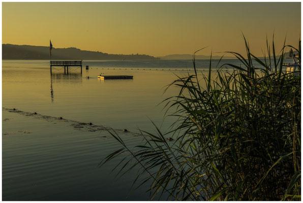 Blick auf den Überlinger See mit Sprungturm 0192