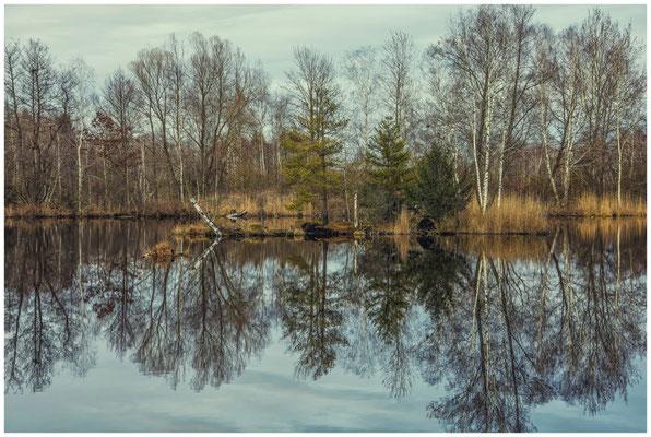 Moorsee im Pfrunger-Burgweiler Ried 1919