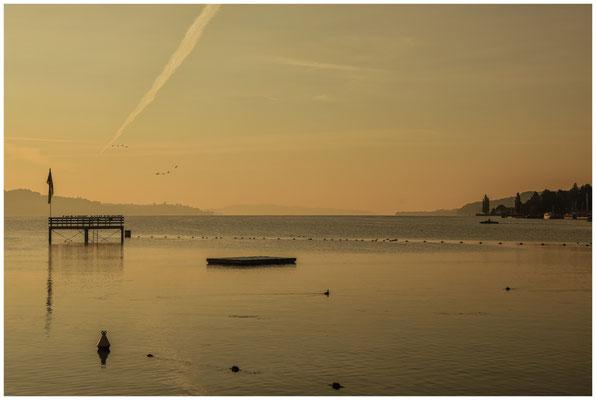Morgenstimmung Überlinger See bei Bodman 4054