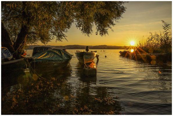 Sonnenaufgang auf der Insel Reichenau mit Fischerbooten 0748