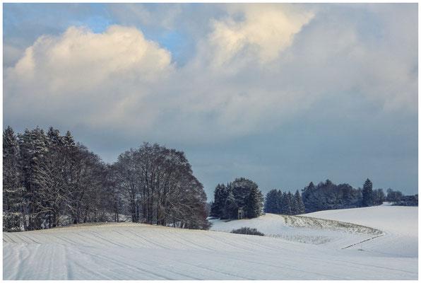 Landschaft bei Münchhöf mit Jägerhochstand 5436