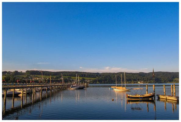 Steg Schiffsanleger Hemmenhofen mit Yachthafen bei Morgenlicht 9831