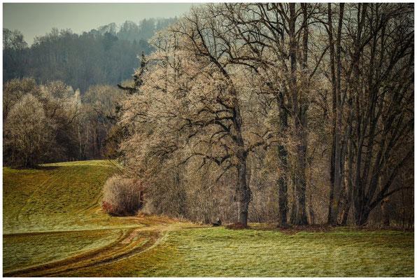 Landschaft mit Holzbank bei Inzigkofen 1699