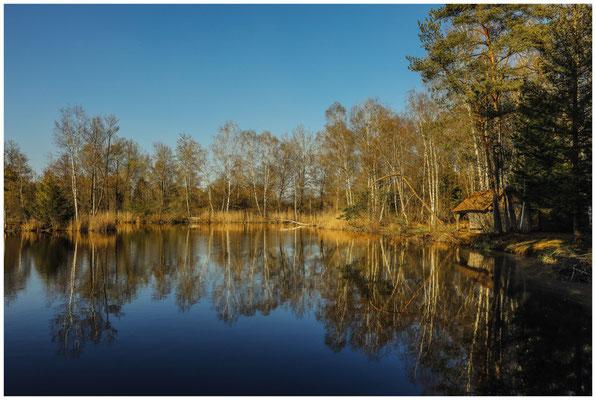 Uferlandschaft Moorteich mit Hütte im Pfrunger-Burgweiler Ried 6678