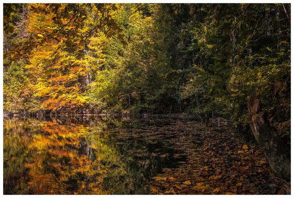 1374 Herbstliche Spiegelung bei Bad Faulenbach