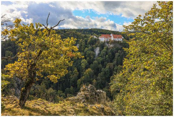 Burg Wildenstein 8256