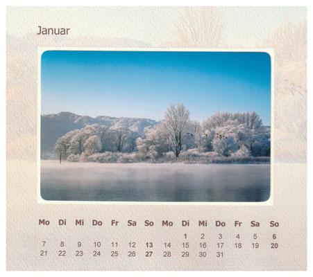 Winter im Naturschutzgebiet Bodman-Ludwigshafen