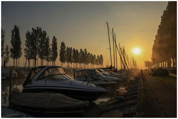 Morgenstimmung im Jachthafen von Moos 3552