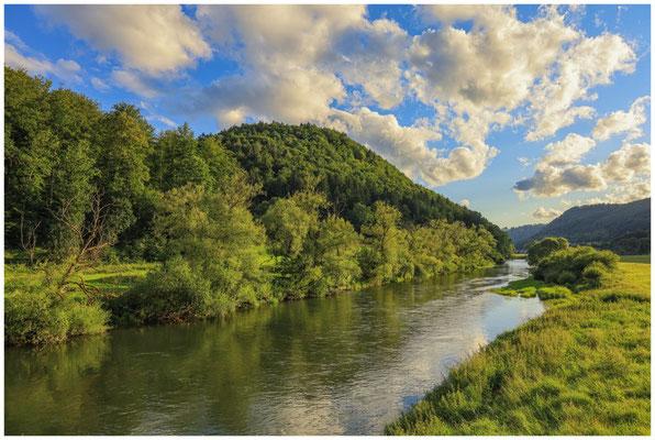 Die Donau bei Neidingen 8072