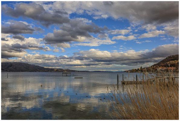 Blick vom Jachthafen auf Bodman und den Überlinger See 2039