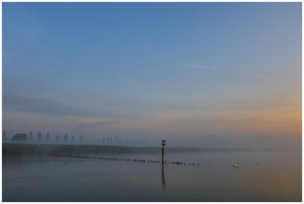 Morgendämmerung über dem Aachried und dem Zeller See 3497