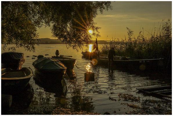 Sonnenaufgang auf der Insel Reichenau mit zurückkehrendem Fischer 0774