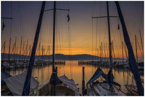 Morgendämmerung im Jachthafen von Bodman 3947