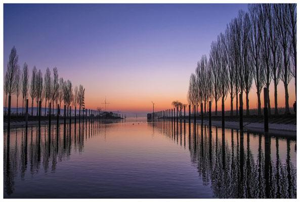 8370 Morgendämmerung im Jachthafen Moos