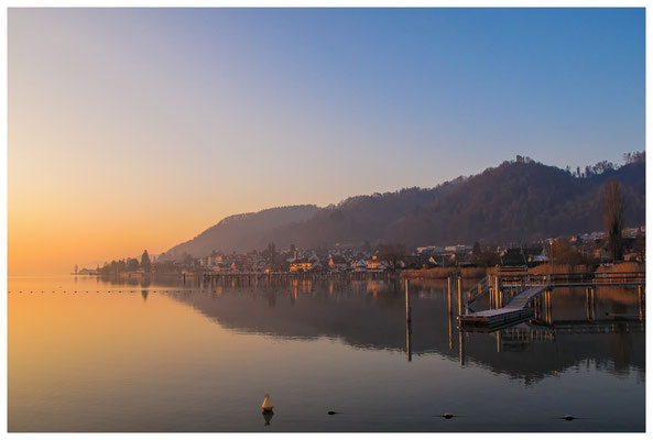 Überlinger See - Bodman bei Sonnenaufgang 3109