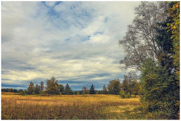 Landschaft im Irndorfer Hardt 8505