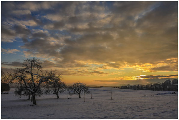 Landschaft bei Münchhöf mit Obstbäumen 5468
