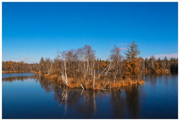 Großer Vogelsee 7220