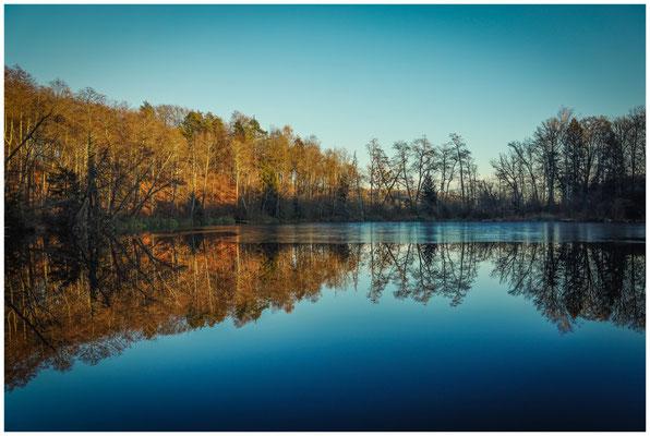 Uferlandschaft Litzelsee im späten Nachmittagslicht 1598