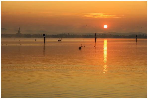 Sonnenaufgang über dem Zeller See mit Radolfzeller Münster 0543