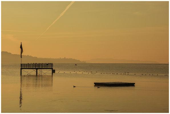 Morgenstimmung Überlinger See bei Bodman 4045