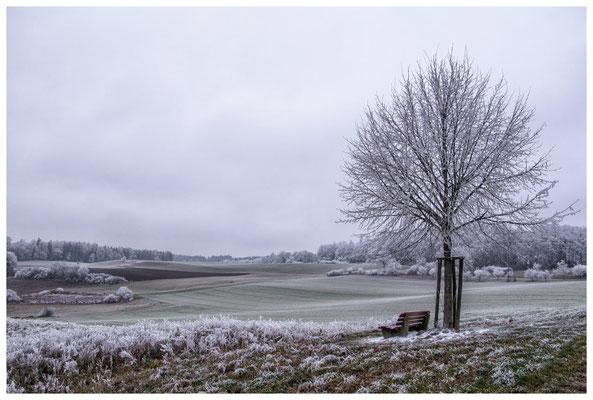 2215 Winterlandschaft
