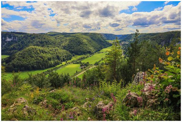 Blick vom Mühlefelsen in das Donautal 7967