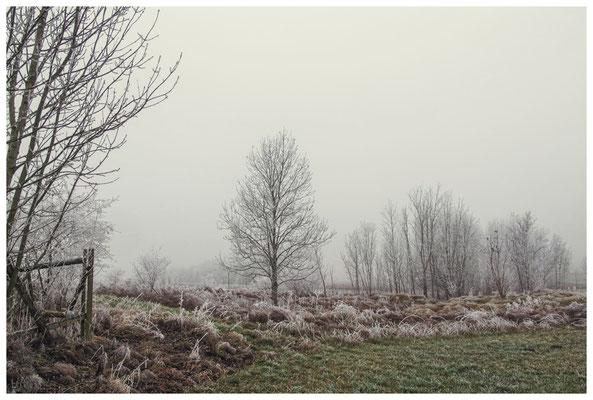 2089 Winterstimmung bei Münchhöf - Eigeltingen