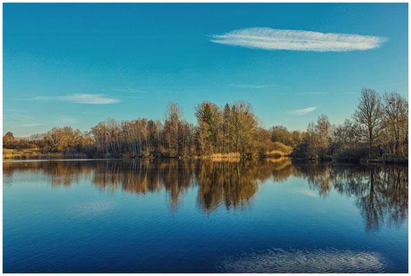Uferlandschaft Böhringer See 1561