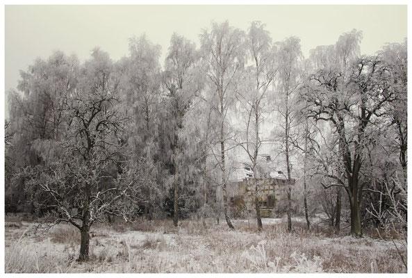Winterlandschaft mit altem Bauernhaus bei Stockach 2527