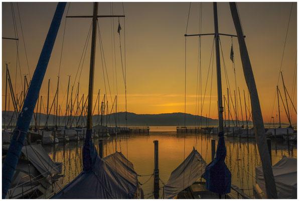 Morgendämmerung im Jachthafen von Bodman 3997