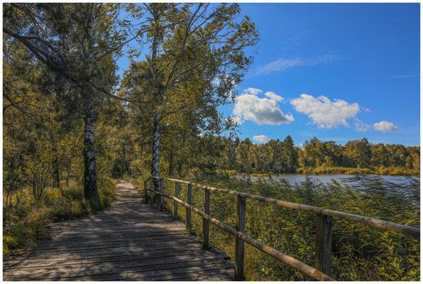 Bohlenweg am Großen Riedsee im Wurzacher Ried 3750