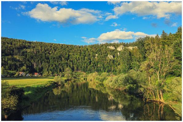 Die Donau bei Neidingen 8075