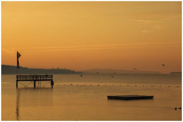 Morgendämmerung Überlinger See bei Bodman mit Sprungturm 4003