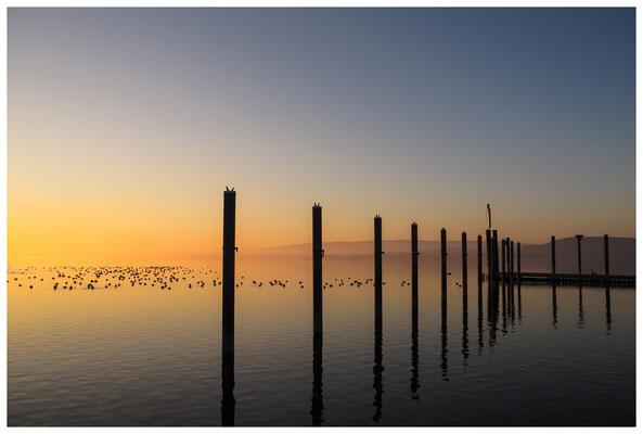 Hafenanleger Radolfzell bei Sonnenaufgang 2738