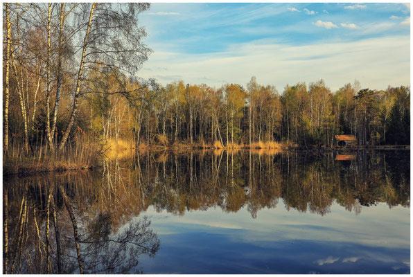 Uferlandschaft Moorsee mit Hütte 2201