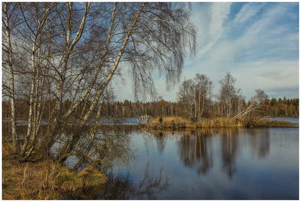 Der Vogelsee im Pfrunger-Burgweiler Ried 1815